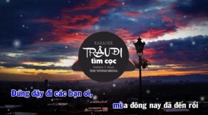 trau-di-tim-coc-karaoke-Bamboo-Wings-phong-thu-am